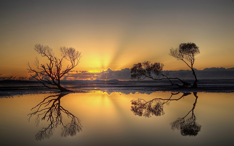 sunset_trees_water_reflection_82729_3840x2400