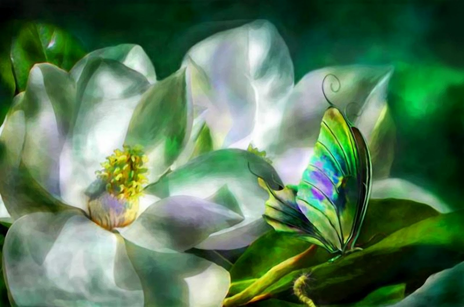 Exquisitas flores de Carol Cavalaris - Arte en Taringa!